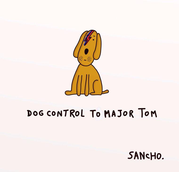 dog control